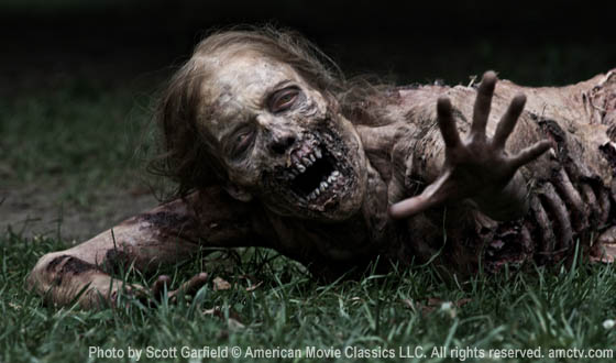 The Walking Dead (Season 1) DVD/ Blu-ray is now available