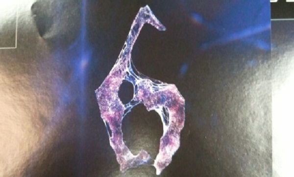 Resident Evil 6 promotional poster leaked, thanks GameStop!