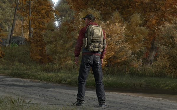 DayZ creator gives update on standalone release
