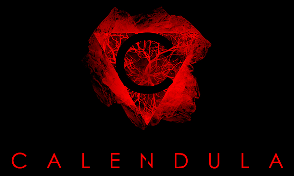Calendula doesn't like you; is inspired by Twin Peaks and P.T.