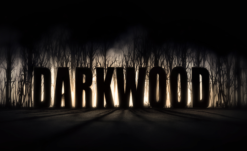 Survival Horror RPG Darkwood Releases August 17 on Steam