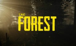 Out of Early Access and Into The Forest