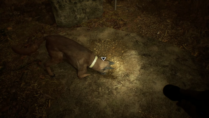 New Blair Witch Gameplay Stars Good Boy Bullet
