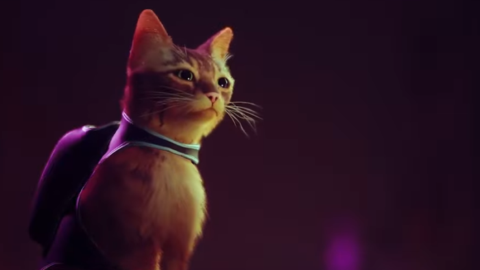 Stray: A Dystopian Future From A Cat's POV