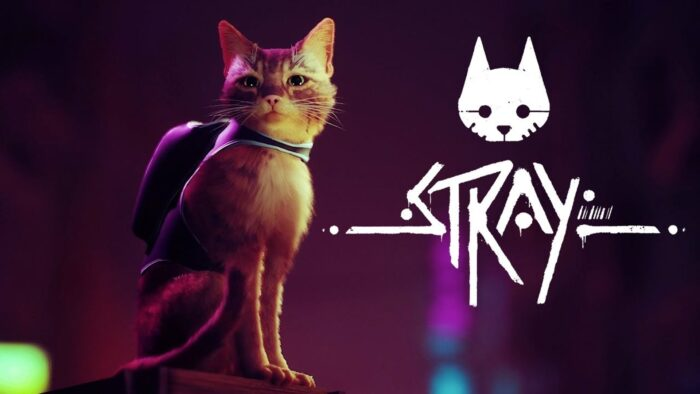 Stray Shows First Gameplay, Release Window Revealed